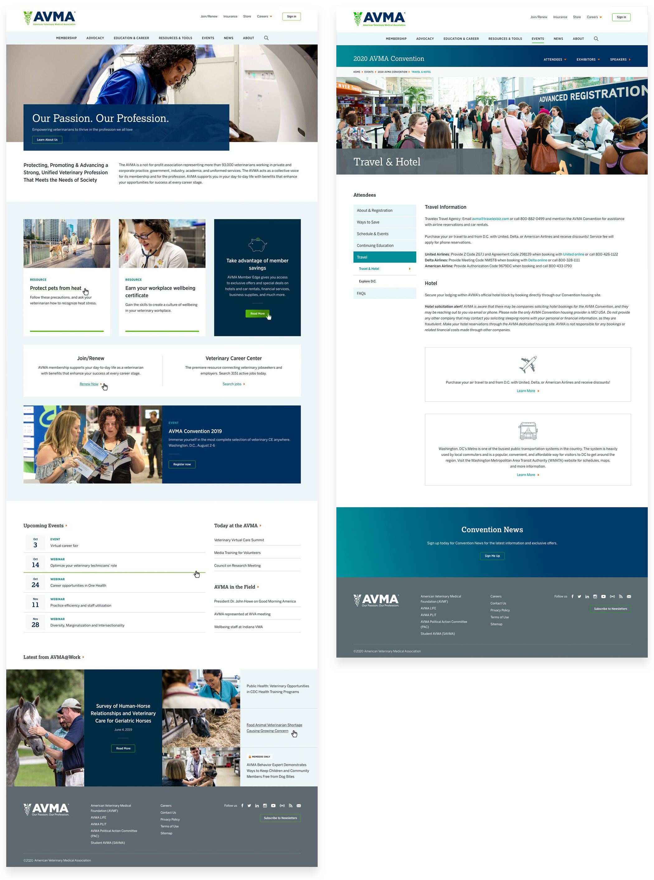 Two screen designs from the AVMA website project
